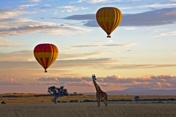 Cali4Travel - africa hot air balloon mara