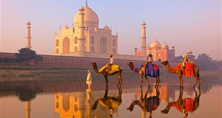 India Tours and Holidays