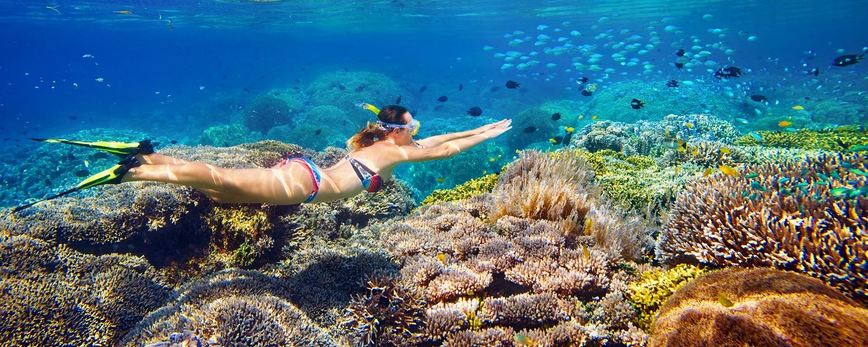 Egypt Tours | Red Sea