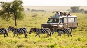 Africa tours and holidays